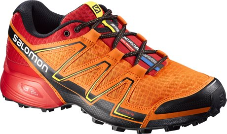 Salomon Speedcross Vario 379078