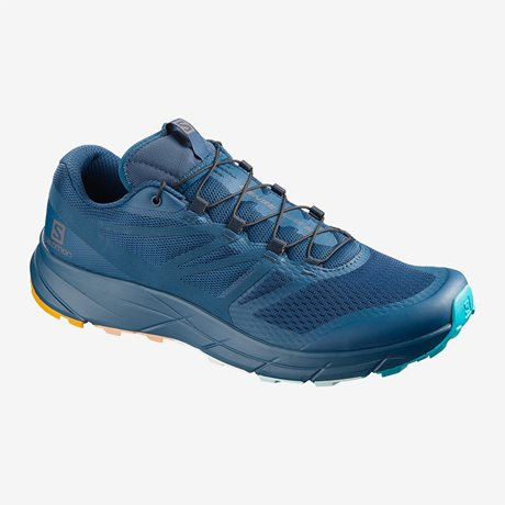 Salomon Sense Ride 2 MMB Limited 408987