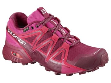 Produkt Salomon Speedcross Vario 2 GTX W 401256